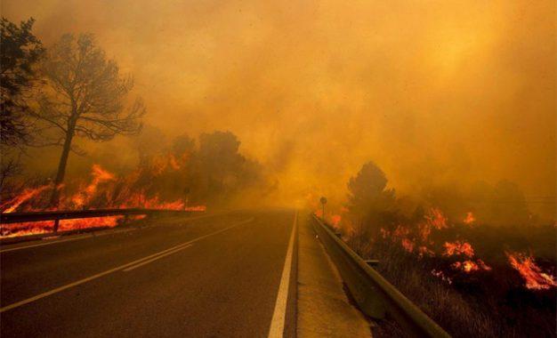 Congreso de los Diputados: modifiquen la Ley de Montes para que incendiar nuestros bosques no sea un negocio