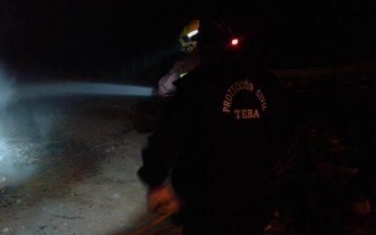 Controlado el incendio agrícola con riesgo para zona forestal en la localidad malagueña de Teba